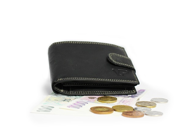 luxusní peněženka.jpg